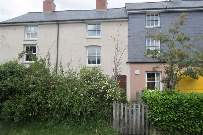 Thumbnail Terraced house to rent in 6, Smithfield Terrace, Llanidloes, Powys