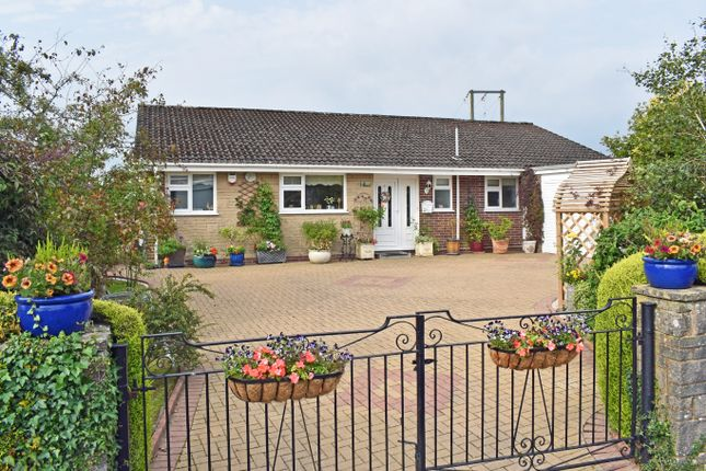 Thumbnail Detached bungalow for sale in ., Llandrindod Wells