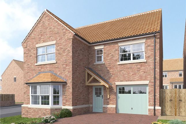 Thumbnail Detached house for sale in The Birch, Dishforth, Thirsk, North Yorkshire