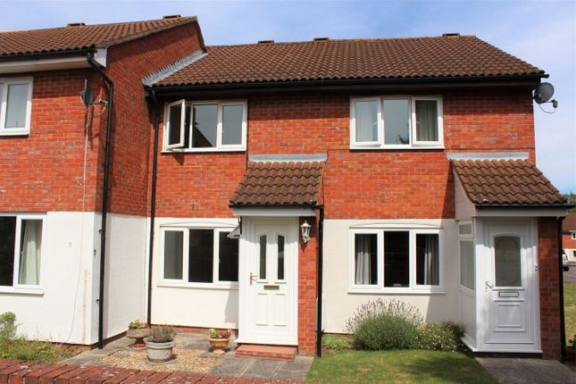 Thumbnail Terraced house to rent in Arnold Close, Taunton