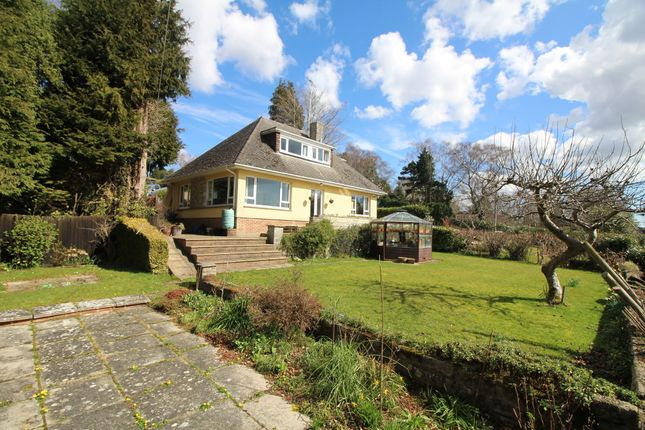 Thumbnail Property for sale in Old Wareham Road, Beacon Hill, Poole
