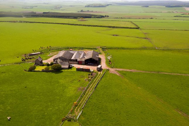 Thumbnail Farm for sale in Longhaven, Peterhead