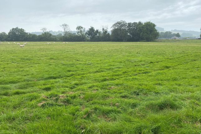 Thumbnail Land for sale in Barley Mow, Lampeter