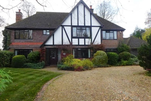 Thumbnail Detached house for sale in Cliddesden Court, Basingstoke