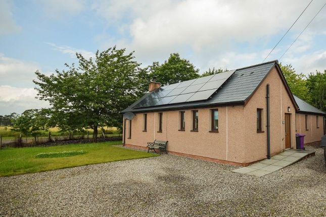 3 bed bungalow to rent in Muirton Of Drumshade, Roundyhill, Kirriemuir, Angus DD8