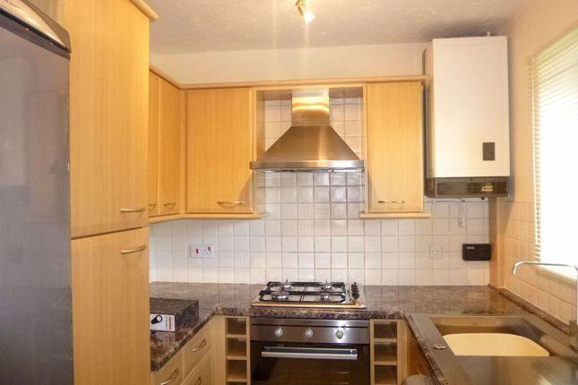 Thumbnail Semi-detached house to rent in Windsor Gardens, Basingstoke