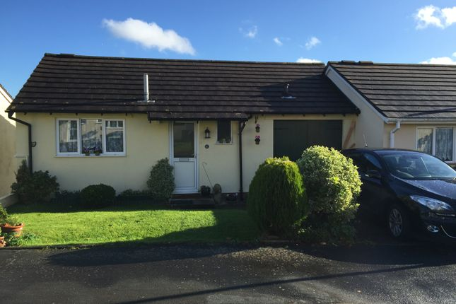 Thumbnail Link-detached house to rent in Chinkwell Rise, Torquay