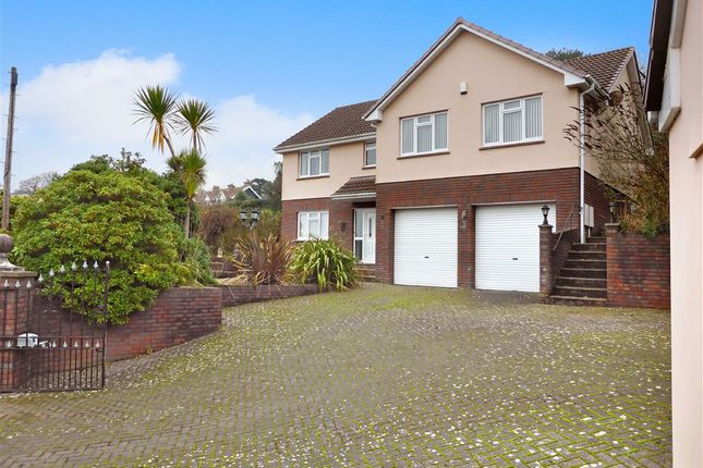 Thumbnail Detached house for sale in Woodlands, Combe Martin, Ilfracombe
