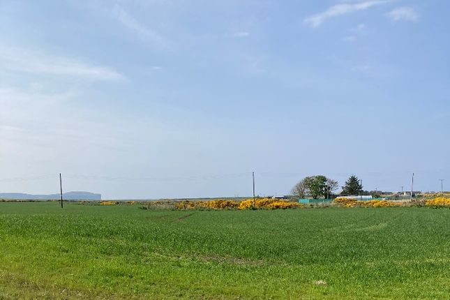 Land for sale in Rattar, Scarfskerry KW14