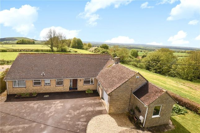 Thumbnail Detached bungalow for sale in Hawkesdene Lane, Shaftesbury
