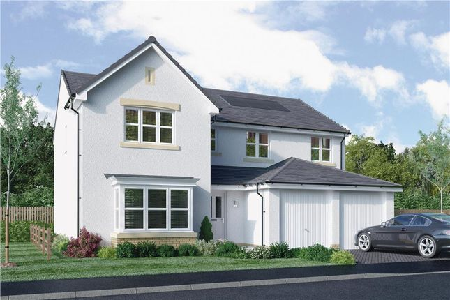 """Thumbnail Detached house for sale in """"Rossie"""" at Bellenden Grove, Dunblane"""