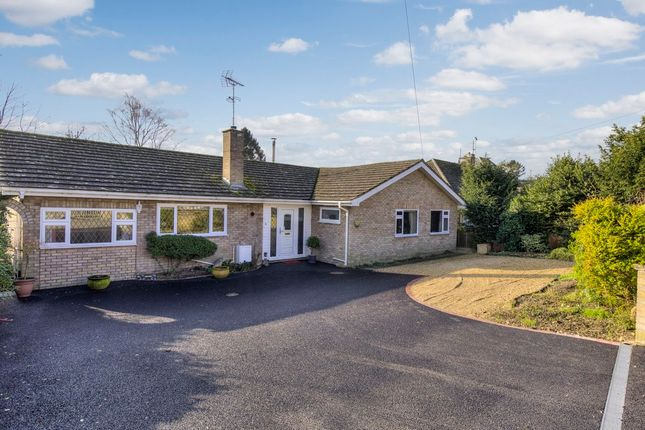 Thumbnail Detached bungalow for sale in Mildenhall, Bury St. Edmunds, Suffolk