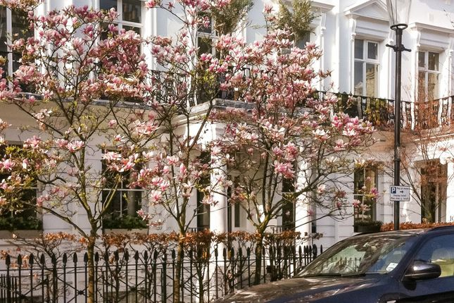 Thumbnail Terraced house for sale in Sumner Place, South Kensington, London