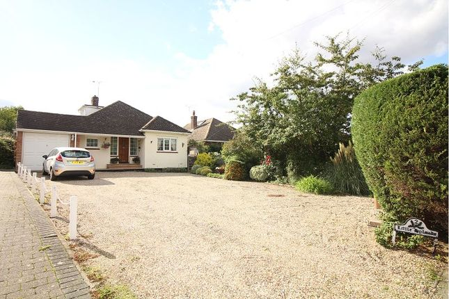 Thumbnail Detached bungalow for sale in North Hill, Little Baddow