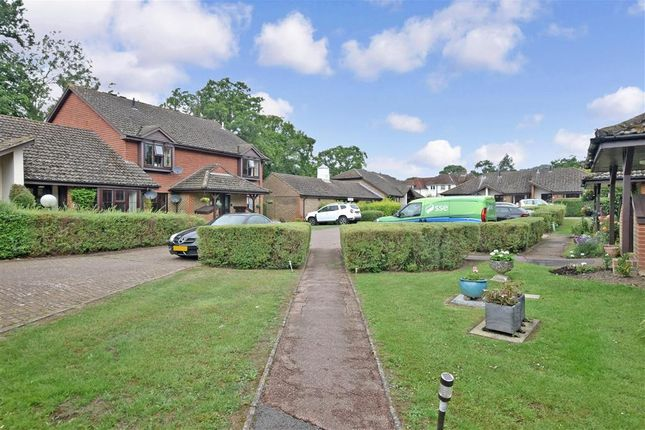 Communal Gardens of Ash Grove, Fernhurst, Haslemere, West Sussex GU27