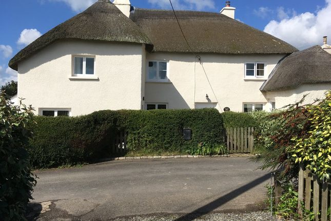 Thumbnail Cottage for sale in Burrington, Umberleigh