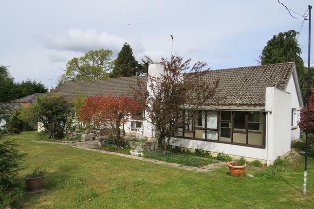 Thumbnail Detached bungalow for sale in Hangersley Hill, Hangersley, Ringwood