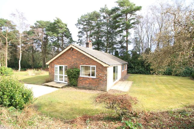 Thumbnail Detached bungalow to rent in Shelley Lane, Ower, Romsey