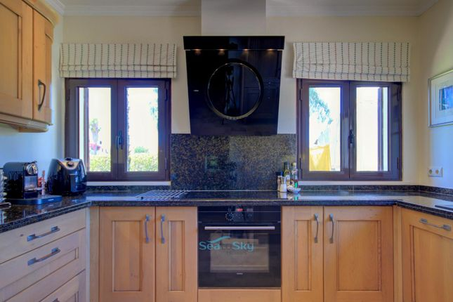 Convection Hob And Extractor