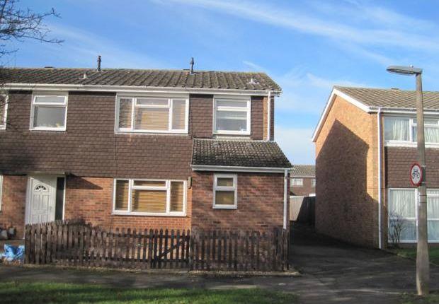 Thumbnail Semi-detached house to rent in Salcombe Close, Devon Park