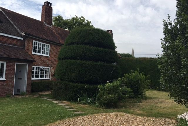 Thumbnail Farmhouse to rent in Martin, Fordingbridge, Hampshire