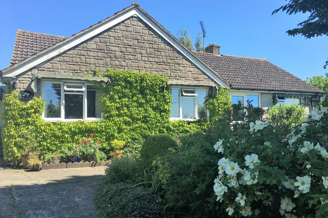 Thumbnail Detached bungalow for sale in Church Close, Stour Row, Shaftesbury
