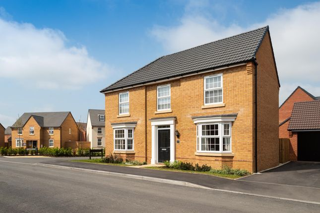 """Thumbnail Detached house for sale in """"Eden"""" at Main Road, Earls Barton, Northampton"""
