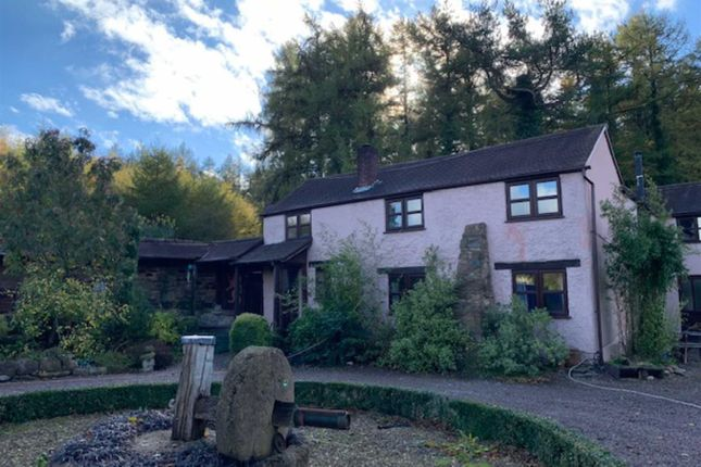 Thumbnail Cottage to rent in The Stenders, Drybrook