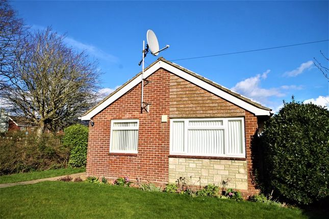 Thumbnail Bungalow to rent in Horndean Road, Emsworth