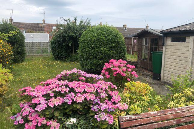 Garden of Merrifield Road, Pakefield NR33
