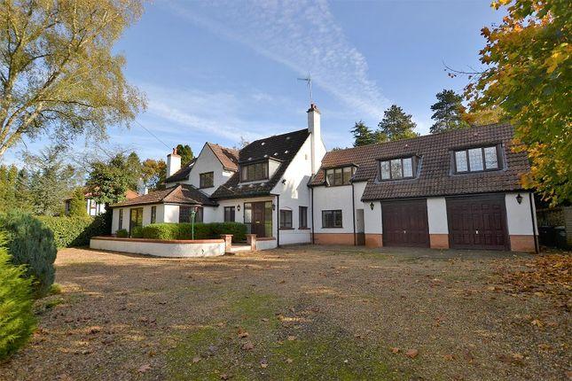 Thumbnail Detached house for sale in East Winch Road, Ashwicken, Kings Lynn, Norfolk.