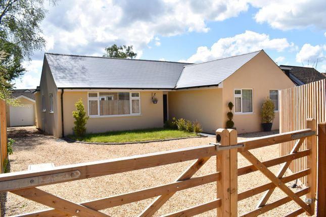 Thumbnail Detached bungalow for sale in Woolsbridge Road, St Leonards, Ringwood