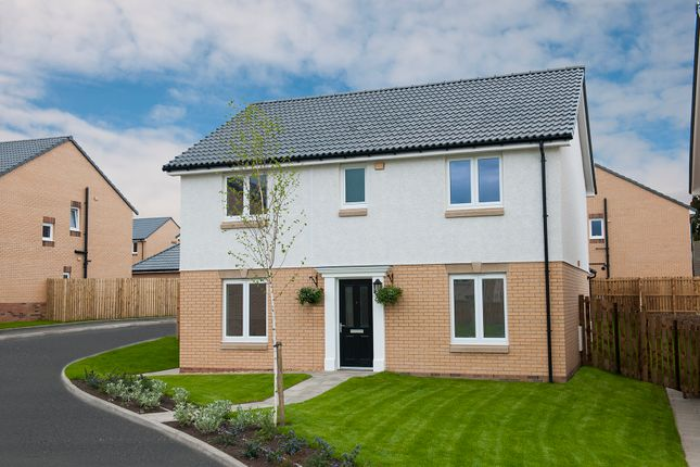 Thumbnail Detached house for sale in Torrance Park, Holytown