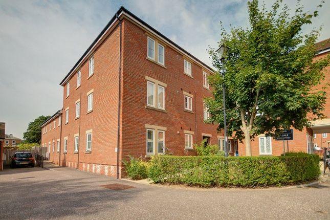 Thumbnail Flat to rent in Gras Lawn, St. Leonards, Exeter