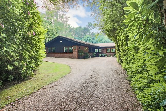Thumbnail Detached bungalow for sale in Rylands, Domewood, Copthorne, Surrey
