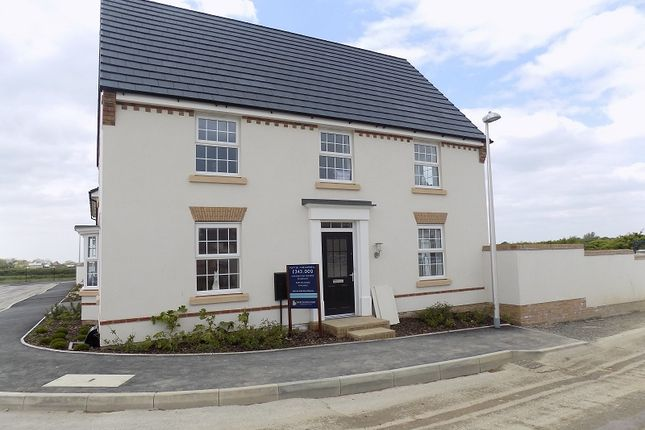 Thumbnail Detached house for sale in St. Brides Road, Wick, Cowbridge