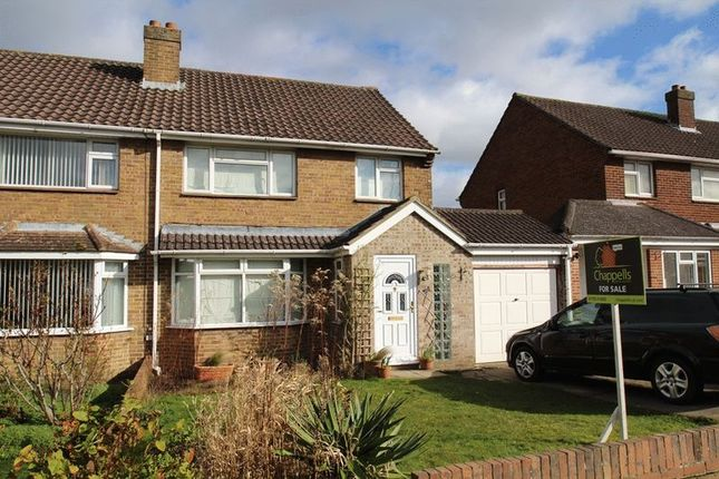 Thumbnail Semi-detached house for sale in Brixham Avenue, Old Walcot, Swindon
