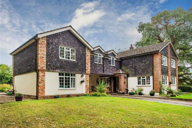 Thumbnail Detached house for sale in Frog Lane, Mapledurwell, Basingstoke