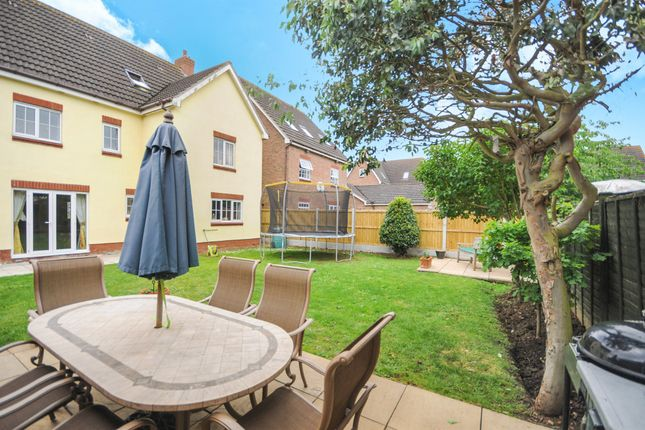 Thumbnail Detached house for sale in Black Bread Close, Braintree