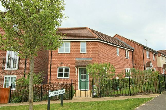 Thumbnail Semi-detached house to rent in Colbred, Jacob Close, Andover