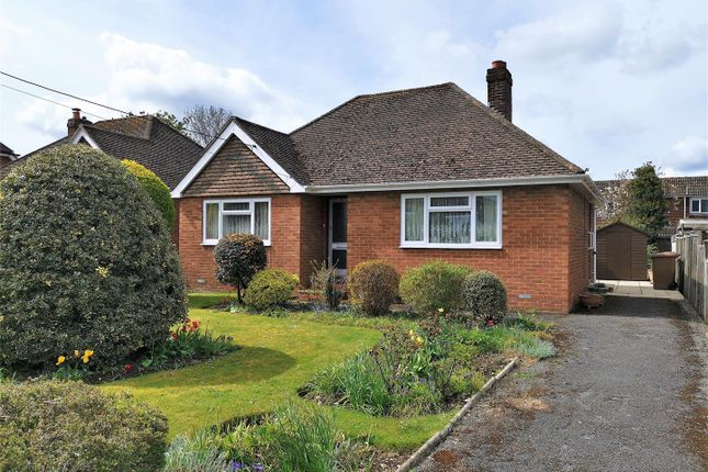 Thumbnail Detached bungalow for sale in Homesteads Road, Basingstoke