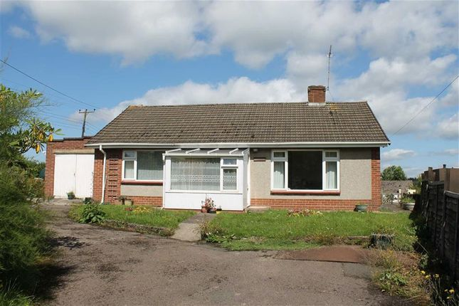 Thumbnail Bungalow for sale in Pine Tree Way, Viney Hill, Lydney