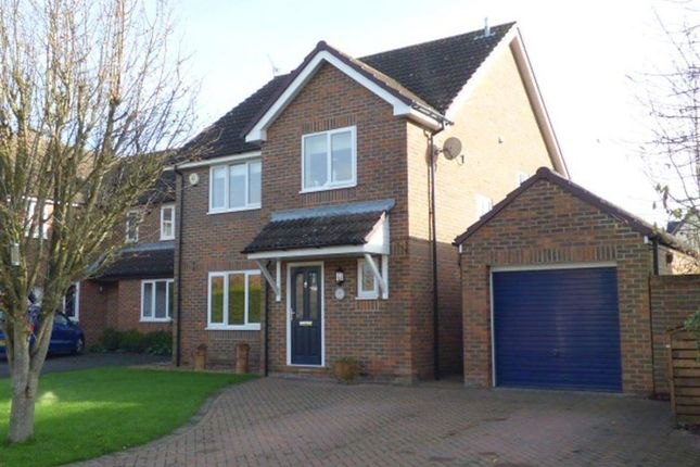 Thumbnail Property to rent in Benetfeld Road, Binfield, Bracknell