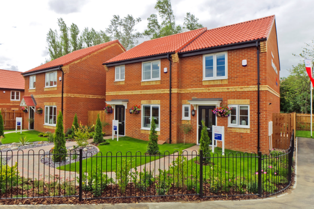 Thumbnail Semi-detached house to rent in Woodland Avenue, Catterick Garrison