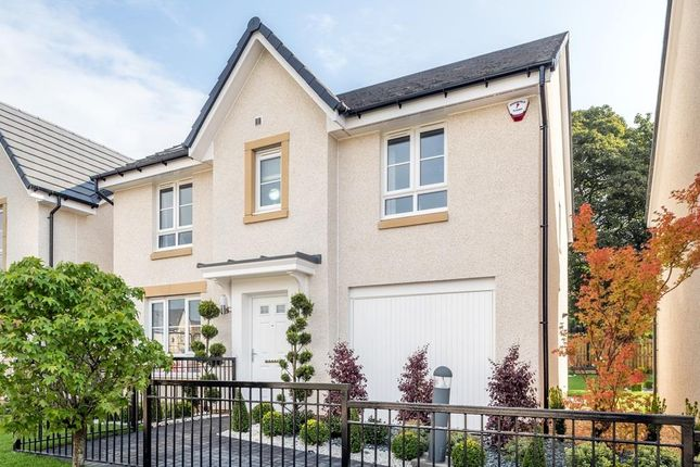 "Thumbnail Detached house for sale in ""Corgarff"" at Westbarr Drive, Coatbridge"