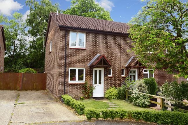 Thumbnail Semi-detached house for sale in Martin Close, Creekmoor, Poole