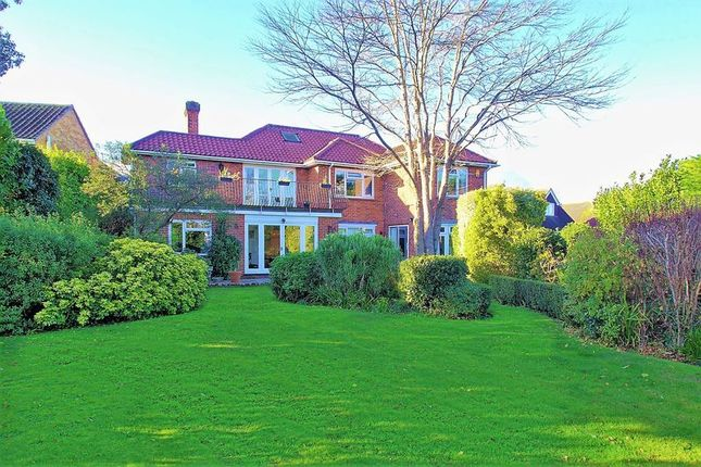 Thumbnail Detached house for sale in South Road, Felpham, Bognor Regis