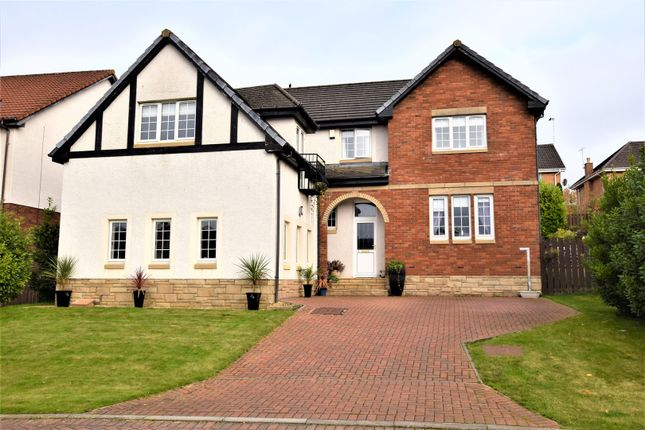 Thumbnail Detached house for sale in Snead View, Motherwell