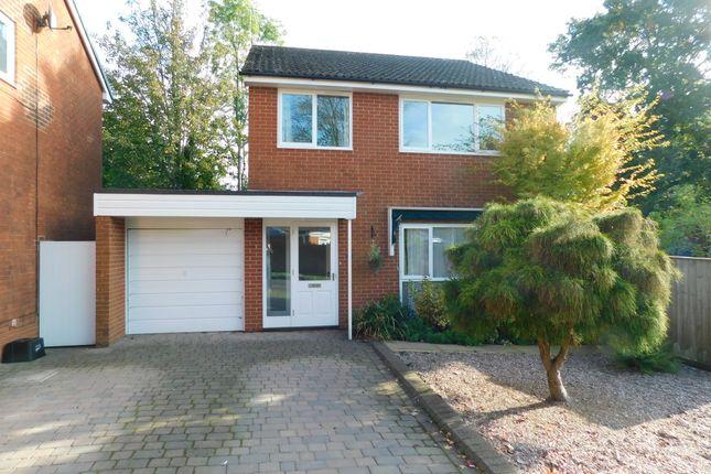 Thumbnail Semi-detached house to rent in Cedar Mount, Lyndhurst