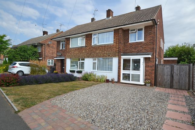 Thumbnail Semi-detached house for sale in Nabbott Road, Chelmsford